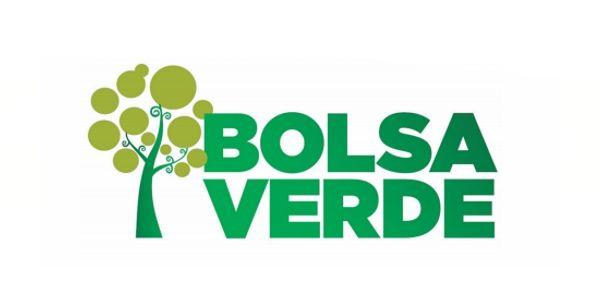 bolsa-verde 2019