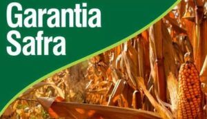 garantia-safra-300x173 2019